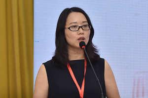 重庆华龙艾迪信息技术有限公司总经理张春霞