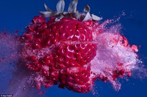 艺术 鲜花 子弹/草莓被子弹击中的瞬间